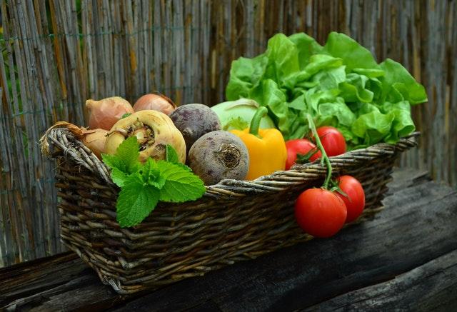 Philosophie ökologische landwirtschaft Teneriffa