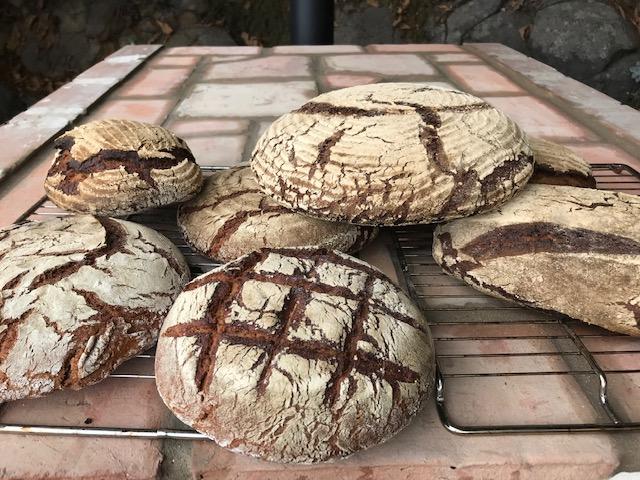 Brot backen Workshop Teneriffa